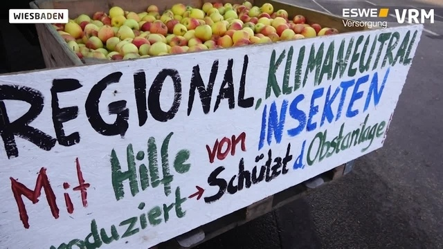 Landwirte demonstrieren mit Traktoren in Wiesbaden