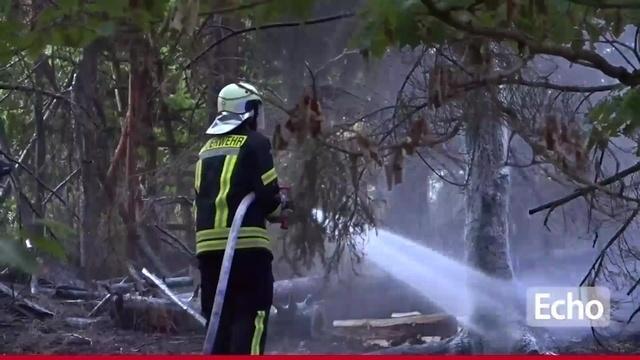 Waldbrand in Dieburg
