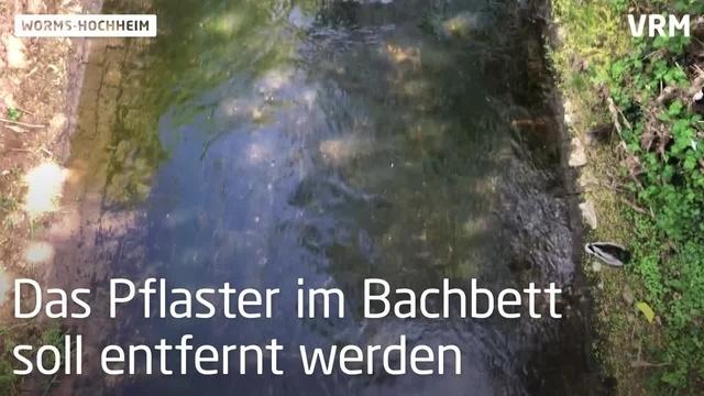 Was passiert am Wormser Pfrimm-Ufer?
