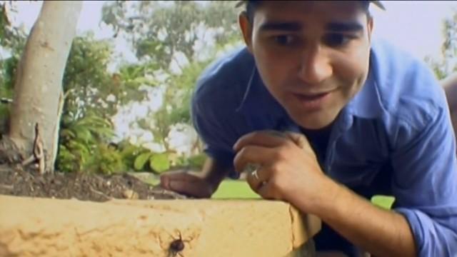 Vorsicht Lebensgefahr (Australien)
