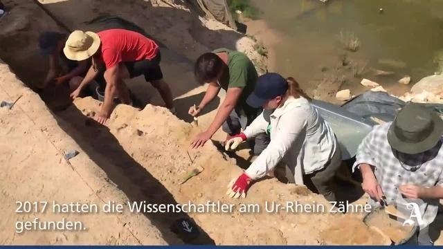 Eppelsheim: Grabungsarbeiten am Ur-Rhein