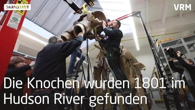 Mastodon in Darmstadt wird reisefertig