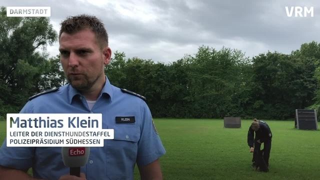 Vom Welpe zum Polizeihund