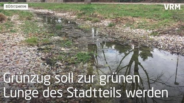 Renaturierung des Büdesheimer Entenbachs soll weitergehen