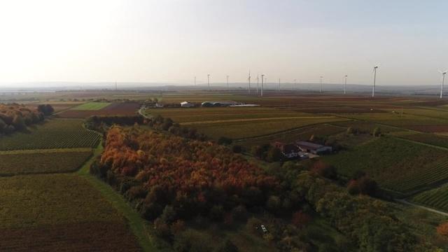 Rheinhessen-Intro-Drohne