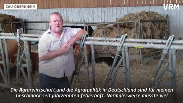 Nachhaltige Rinderzucht in Gau-Odernheim
