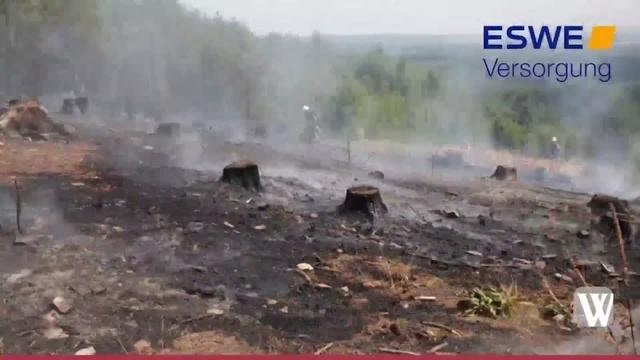 Waldbrand auf der Platte in Wiesbaden