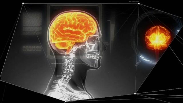 Ich bin Hirnforscher