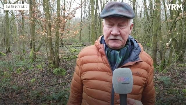 Orkan Wiebke tobte vor 30 Jahren in Darmstadts Wald