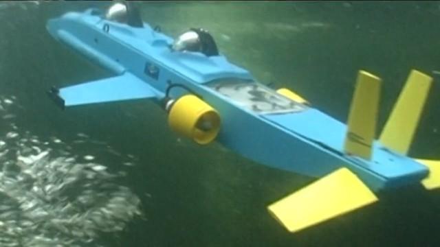 Unterwasserflieger im Miniatur-Format