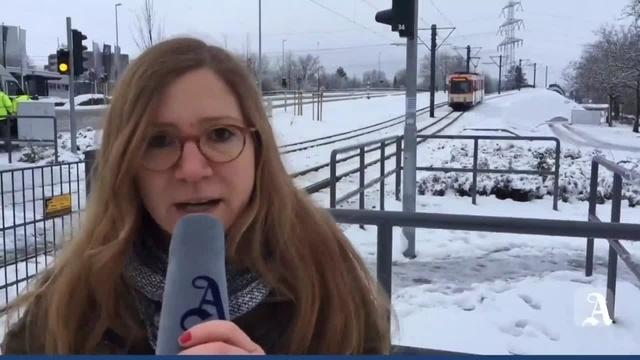 Mainz: Fahrradfahrer von Straßenbahn erfasst