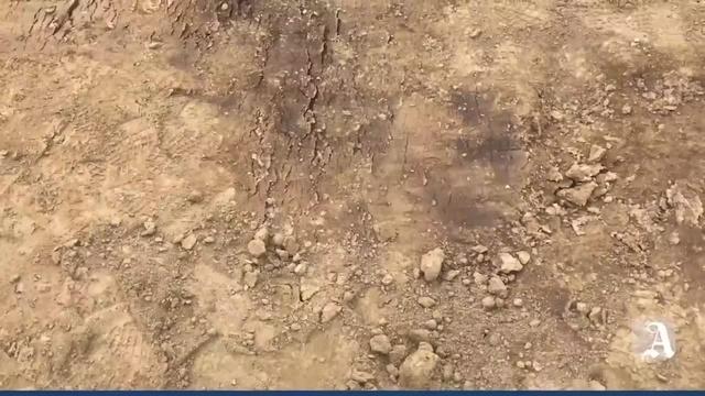 Saulheim: Knochen in Baugrube gefunden