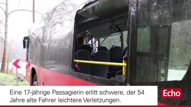 Bus fährt nahe Bad König gegen einen Baum