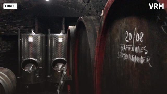 Weingut Weiler aus Lorch ist Entdeckung des Jahres