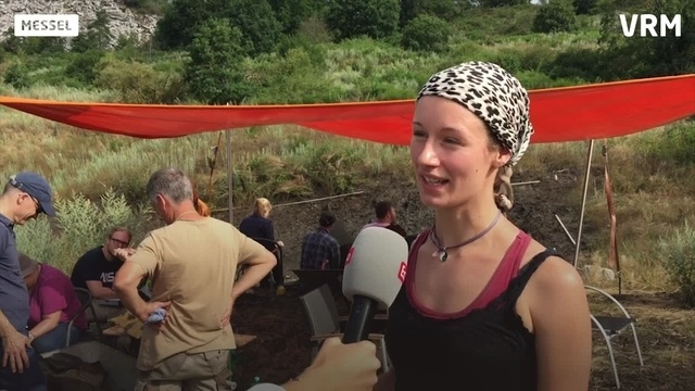 Nach zwei Jahren wieder Ausgrabungen in Grube Messel