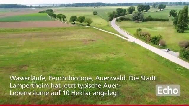 Ein Rundflug über den Winterdamm zwischen Lampertheim und Mannheim-Kirschgartshausen
