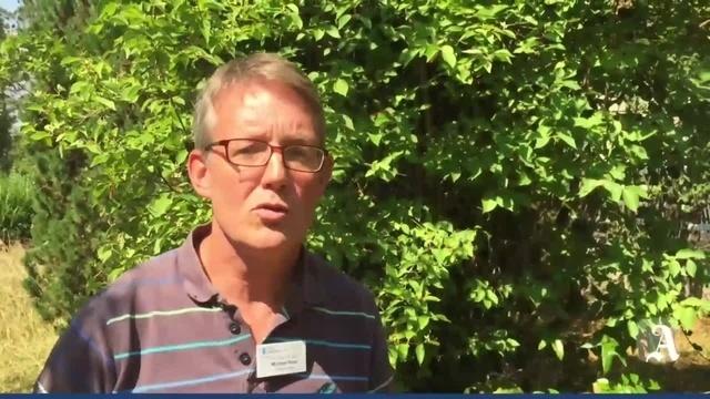 Rheinhessen-Fachklinik: Interview mit Michael Huss