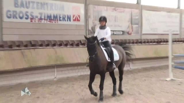 Equine Stories: Reitstunde mit Nachwuchs-Dressurreiterin Joan Weske