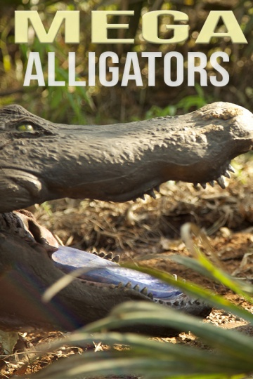 Mega Alligators