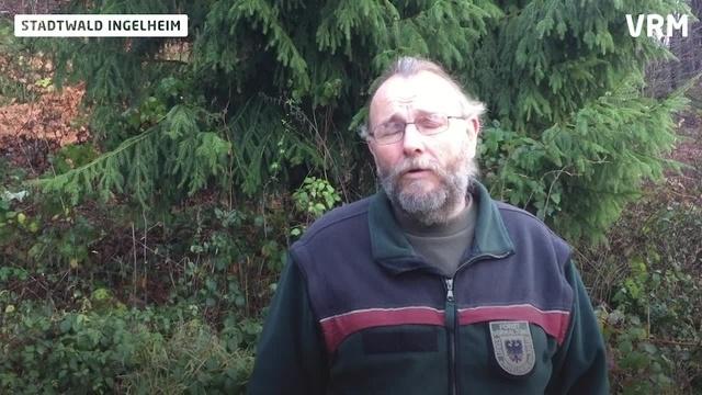 Ingelheim: Stadtförster Diehl und die Jagd