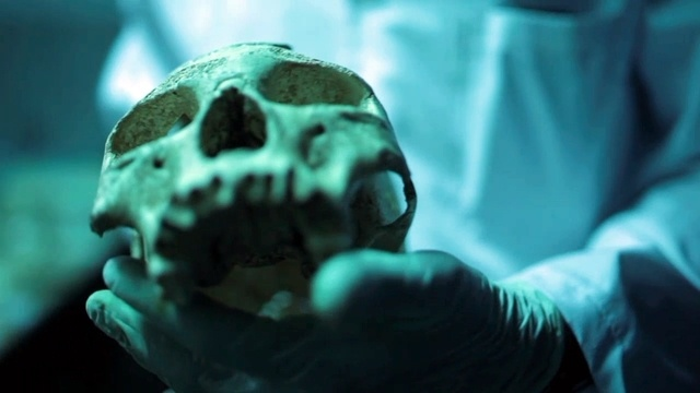 Die Apokalypse der Neandertaler (2)