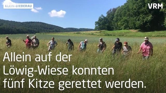 Rettungseinsatz für Rehkitze in Klein-Bieberau