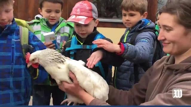 Eröffnung des Hühnerhofes im Tiergarten Worms