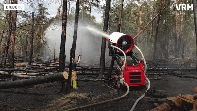 Waldbrand bei Münster: Der Stand der Dinge