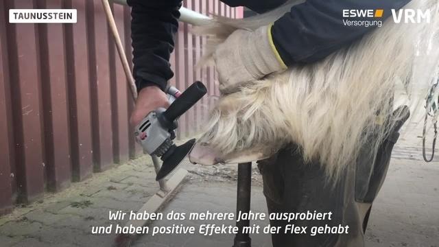 Frankfurter Schmied arbeitet mit Flex statt Raspel