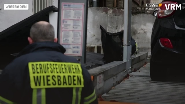 Wiesbadener Feuerwehr rettet Waschbär