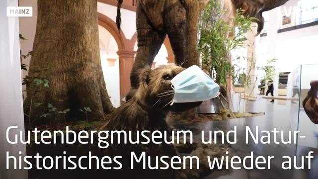 Gutenberg-Museum und Naturhistorisches Museum öffnen