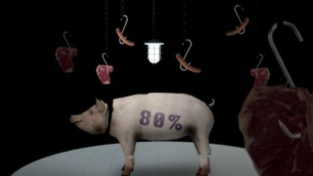Auf´s Schwein gekommen