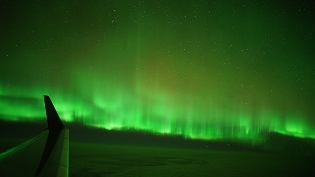 Auroraflug zu gewinnen