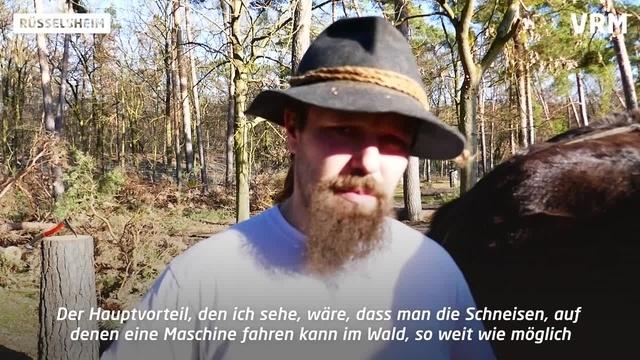 Pferd statt Maschine im Rüsselsheimer Wald