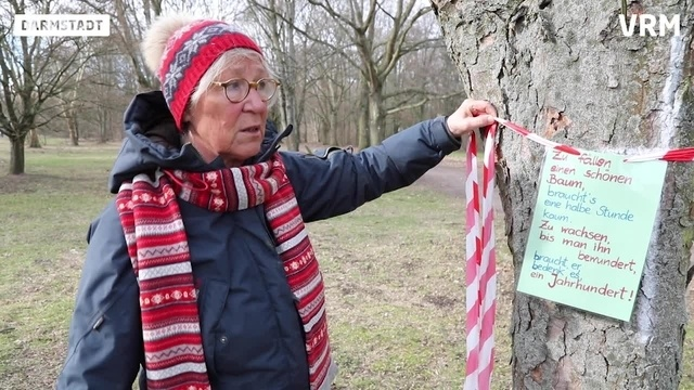 Lichtwiesenbahn-Gegner rufen zum Trauerspaziergang auf