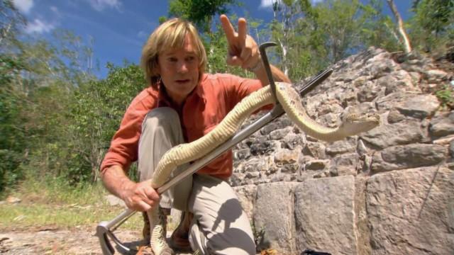 Die Klapperschlange der Maya