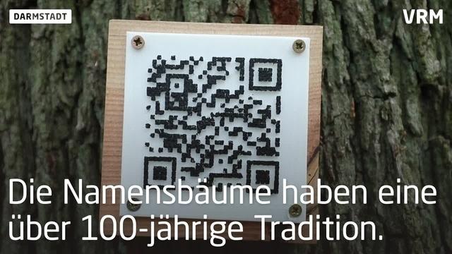 Darmstadt: Eine Eiche zu Ehren von Jonathan Heimes
