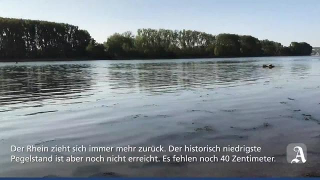 Niedrigwasser im Rhein bei Nackenheim