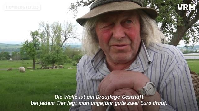 Schäfer in Deutschland: Ein harter Job