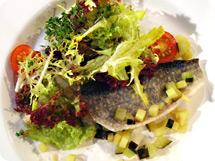 Pochierter Saibling an sommerlichen Salaten und Kartoffel-Gurkenvinairette