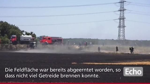 Großbrand im Feld bei Groß-Rohrheim
